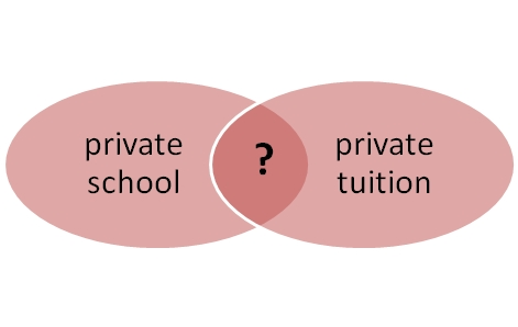 private school private tuition1
